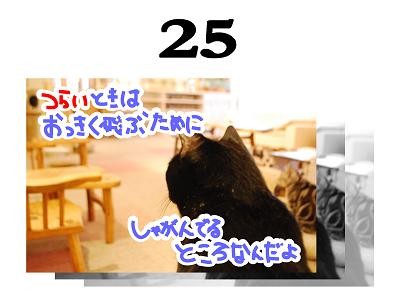 25s_20090527105601.jpg
