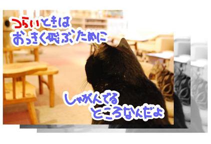 25ss_20090825202613.jpg