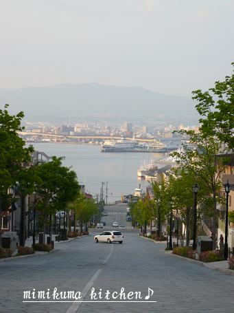 函館の坂 八幡坂2