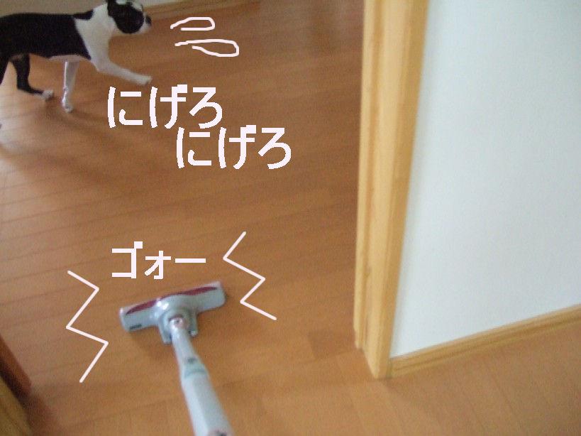 DSCF3719.jpg