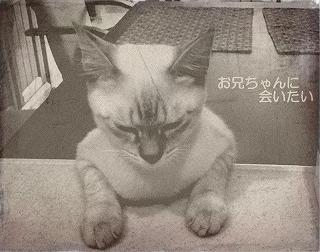 oldphoto16-b.jpg