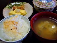 tsutsujitei0104.jpg
