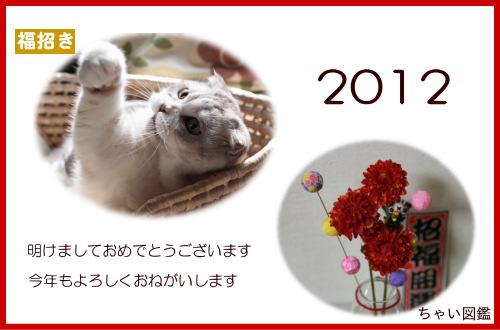 2012-chai.jpg