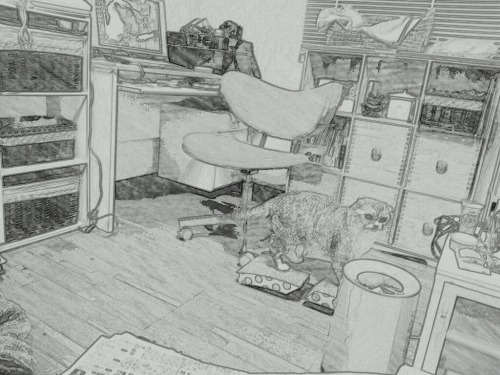 PaperCamera2012-03-26-20-51-40.jpg