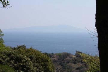頂上付近から見える海が綺麗