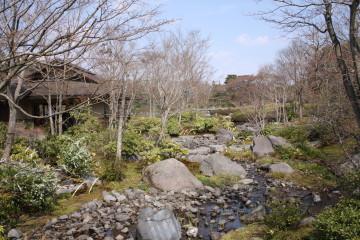 日本庭園内①
