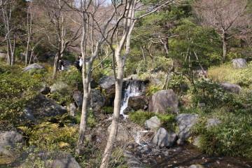 日本庭園内③