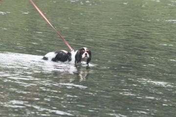 水の中は気持ち良いね