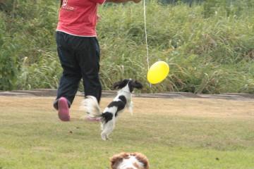 エリーと風船で遊びました