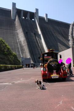 宮ヶ瀬ダムとロードトレインの前で・・・