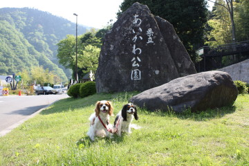 あいかわ公園の名前の入った石の前で・・・