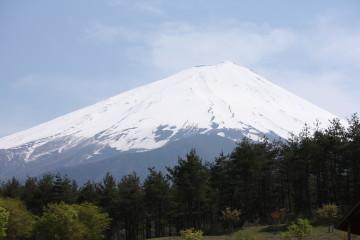 富士山が大きく見える公園
