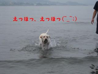 マックス海2_1_1
