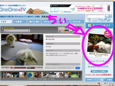 OneOneTVちぃの画像1