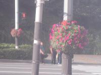 08.09.13~15 韓国旅行 064