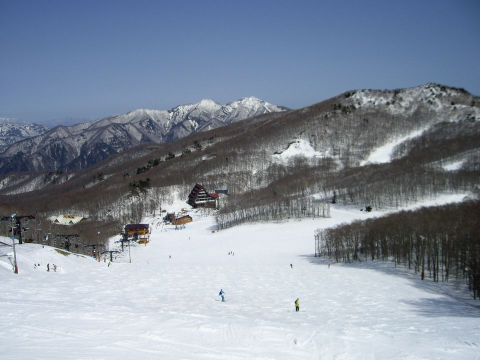 20090321_3
