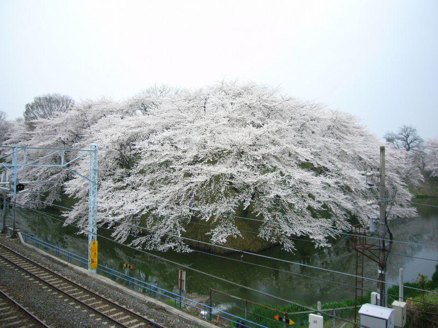 20090414_32