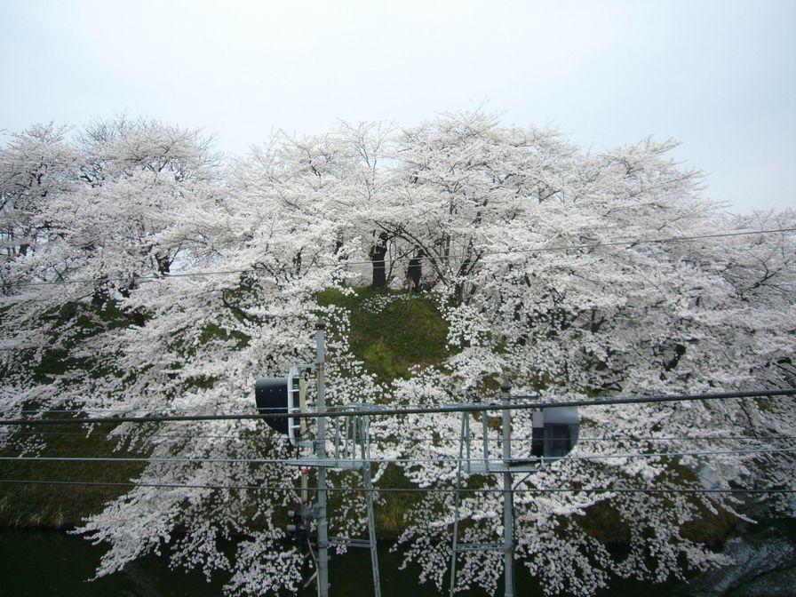 20090414_33