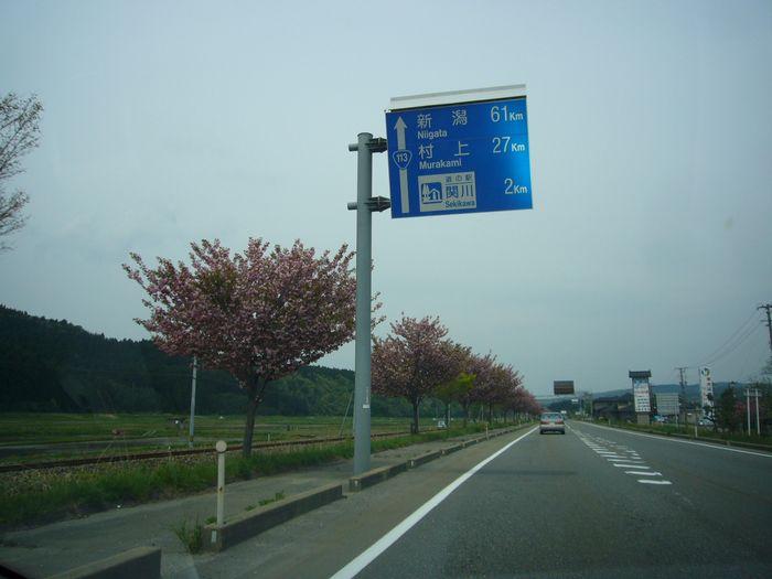 20090517_4