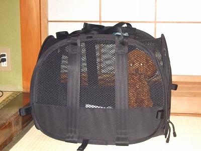 20090810-11.jpg