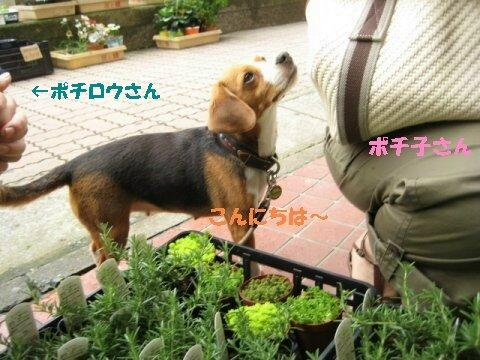 IMG_1024_sh01.jpg