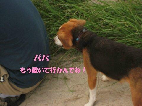 IMG_1503_sh01.jpg