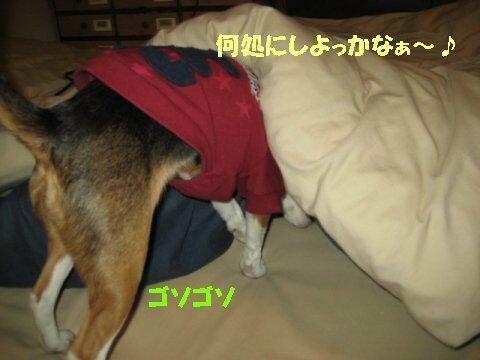 IMG_5742_sh01.jpg