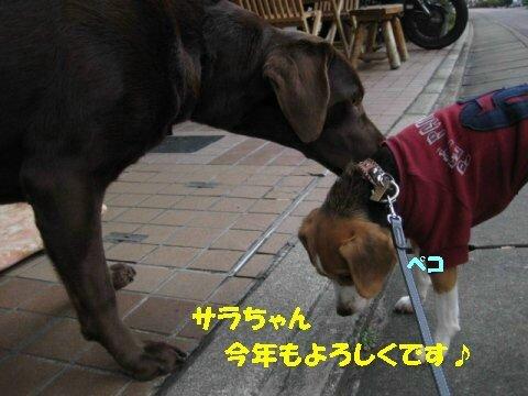 IMG_5751_sh01.jpg