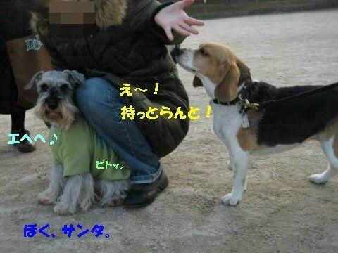 IMG_6310_sh02.jpg
