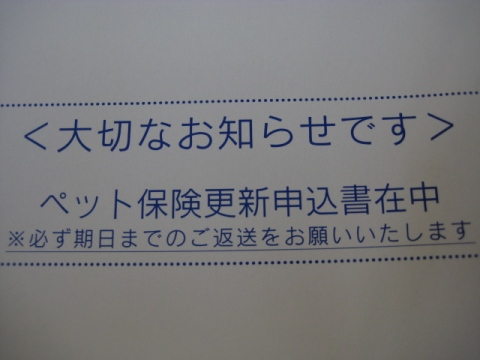 IMG_6489.jpg