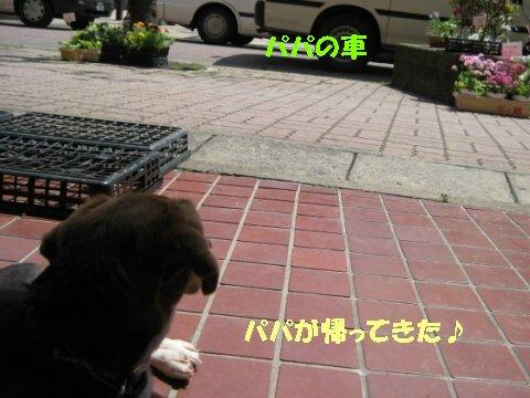 IMG_7590_sh01.jpg