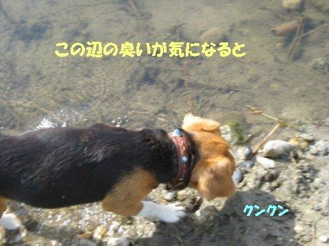 IMG_7973_sh02.jpg
