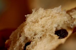 0905 ぶどうパン