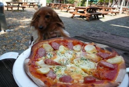 焼きたて石窯ピザ