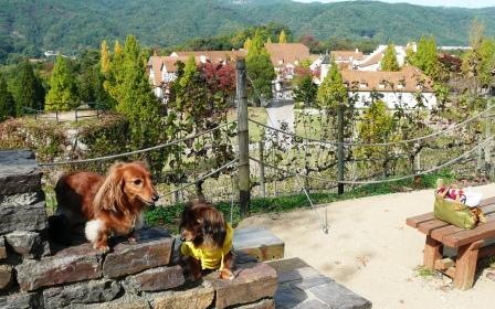 ドイツの田舎町