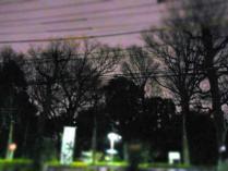 12-2-14 夜空