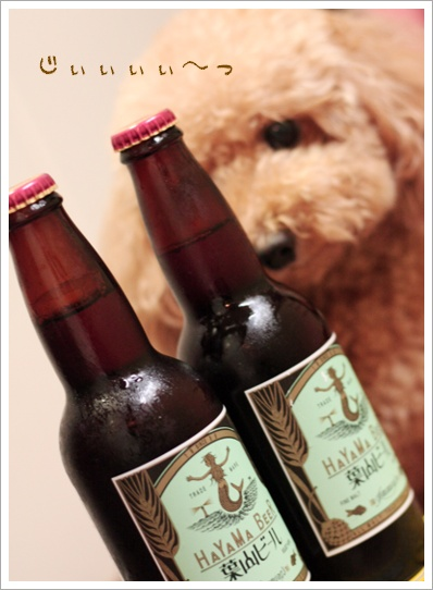 葉山 地ビール