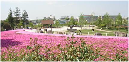 ミササガ公園