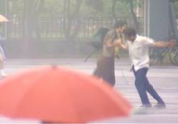 雨の中、デクとはしやぐヒロ