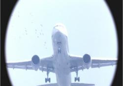 飛行機おたくたちが撮っている写真映像