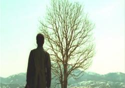 枯れた林檎の木