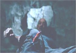 井戸に落ち、骨折して骨がむき出しになっているロック