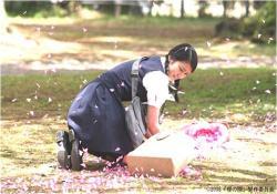 季節外れの桜を散らしてしまった、みずたま