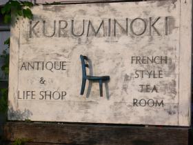 kuruminoki3.jpg
