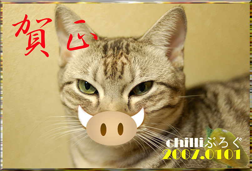 060101_inoshishi.jpg