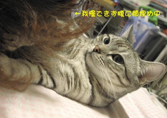 070103_pote_tsume_04.jpg
