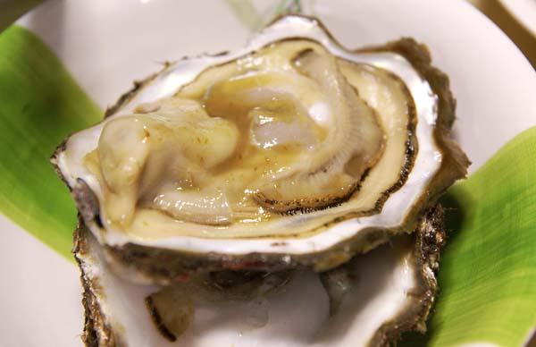 070402_oyster.jpg