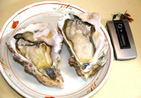 070517_oyster3.jpg