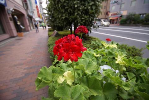 070818_iidabashi2.jpg