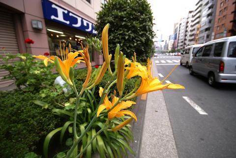 070818_iidabashi3.jpg
